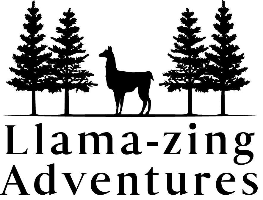 Llama-zing Adventures